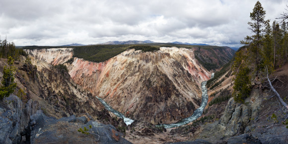 Large panorama of the grand canyon of Yellowstone national park